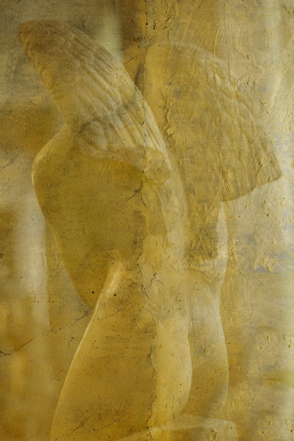 Naked Wings ref# Z8D7785_gold_fresco