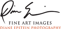 Diane Epstein Photography / Biophilic Art & Design